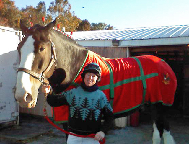 Janice L. Blake Clydesdale Budweiser Super Bowl