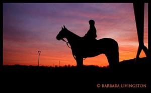Janice L. Blake Silhouette Sunrise