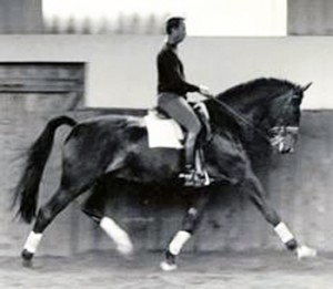 Janice L. Blake Tom Poulin Extended Trot