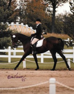 Janice L. Blake and Panache in a Dressage Test at St. James Farm in Illinois