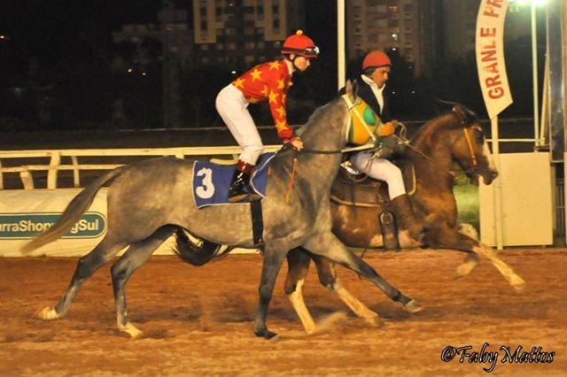 Janice L. Blake Copo de Leite Brazil Your Mane Track